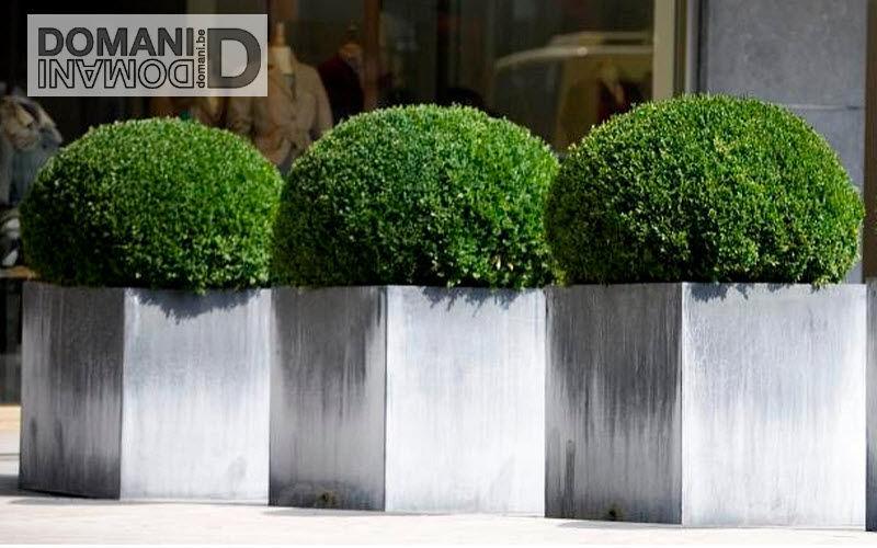 Domani Bac à fleurs Bacs Jardin Bacs Pots  | Design Contemporain
