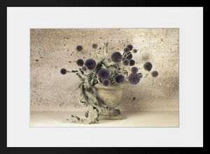 PHOTOBAY - chardons boule et feuilles d'artichauts séchées - Photographie