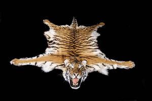 MASAI GALLERY - carpette de tigre du bengale - Peau De Bête