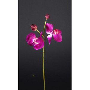 REFLETS NATURE -  - Fleur Artificielle