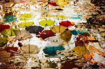 ALEX ARNAOUDOV - pick an umbrella - Photographie