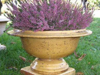PLANTERS-CONTACT-PROVENCE - petite coupe classique miel - Vasque De Jardin