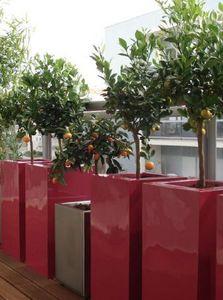 PARIS CREATEURS -  - Bac � Fleurs