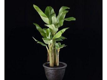 Deco Factory - jardin de bananiers artificiels savannah - Arbre Artificiel