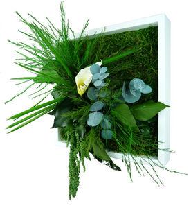FLOWERBOX - tableau nature mono avec plantes stabilisées 22x22 - Tableau Végétal