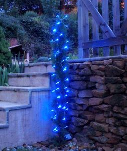 FEERIE SOLAIRE - guirlande solaire 60 leds bleues à clignotements 7 - Guirlande Lumineuse