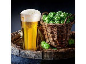 Dajar Sp. z o.o. -  - Verre À Bière