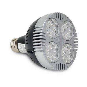 Barcelona LED France -  - Ampoule Iodure Métallique