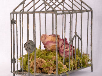 Coquecigrues - cage pagode - Cage � Oiseaux