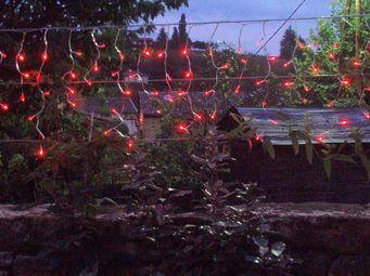 FEERIE SOLAIRE - guirlande solaire rideau 80 leds - Guirlande Lumineuse