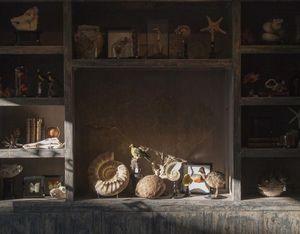 DE MUSEUM WINKEL.COM -  - Fossile