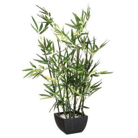 ATMOSPHERA - Plante artificielle-ATMOSPHERA