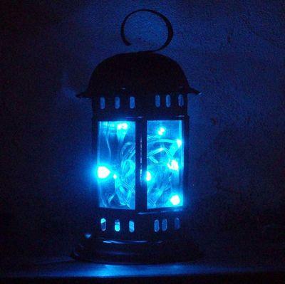 FEERIE SOLAIRE - Guirlande lumineuse-FEERIE SOLAIRE-Guirlande solaire 10 leds bleues 80cm