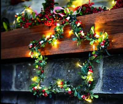 Blachere Illumination - Guirlande de Noël électrique-Blachere Illumination-Champignons à piles