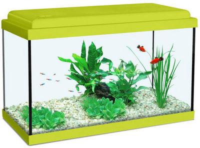 ZOLUX - Aquarium-ZOLUX-Aquarium enfant vert kiwi