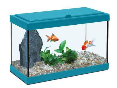 ZOLUX - Aquarium-ZOLUX-Aquarium enfant bleu lagon 12.5L