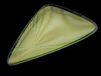 Joseph Joseph - Plat de présentation-Joseph Joseph-Optic Triangle Green