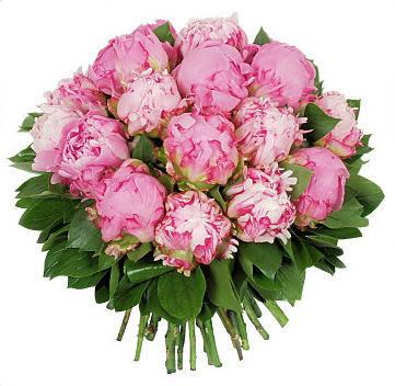 BEBLOOM - Composition florale-BEBLOOM