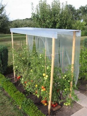 La boutique du jardinage - Mini-serre-La boutique du jardinage-TOIT A TOMATE