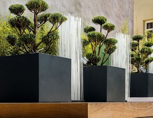 IMAGE'IN by ATELIER SO GREEN -  - Tree Pot