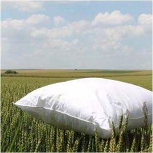 Lamy - boréal prestige - Natural Pillow