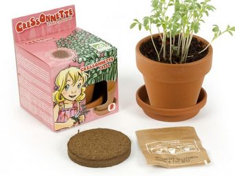 Radis Et Capucine - la cressonnette et sa croissance rapide pour les e - Interior Garden