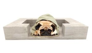 Rouviere Collection -  - Doggy Bed