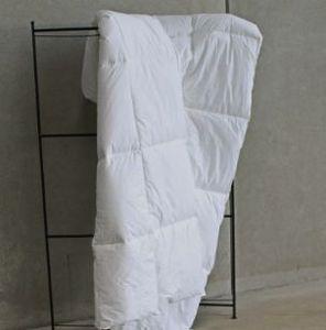 Lamy - confortel - Duvet