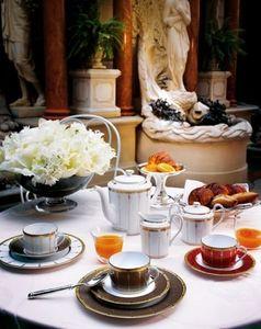 Haviland - tambour - Tea Cup