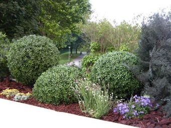 Decors Nature -  - Landscaped Garden