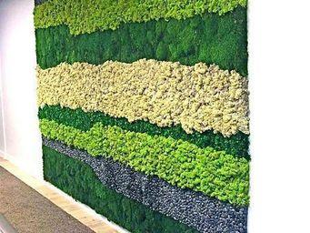 Decors Nature -  - Organic Artwork