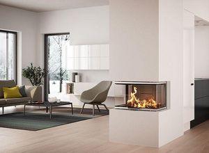 Rais - rais visio 3 - Fireplace Insert