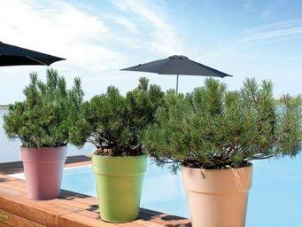 DEROMA France -  - Garden Pot