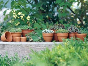 DEROMA France - mini sun - Flower Pot