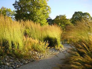 ATELIER JARDINS -  - Landscaped Garden