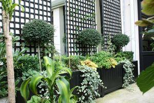 FLORIAN DEGROISE -  - Decked Terrace
