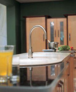 PERRIN & ROWE - .mimas single lever - Kitchen Mixertap