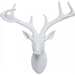 KARE DESIGN - tête antler deer white - Hunting Trophy