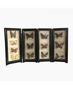 VIDE DECO -  - Butterfly