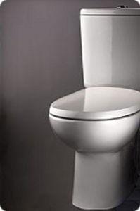 Dubourgel - posé au sol - Toilet