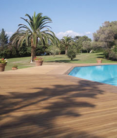 Diodon -  - Pool Deck