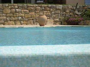 Omnitech Realisations -  - Pool Tile