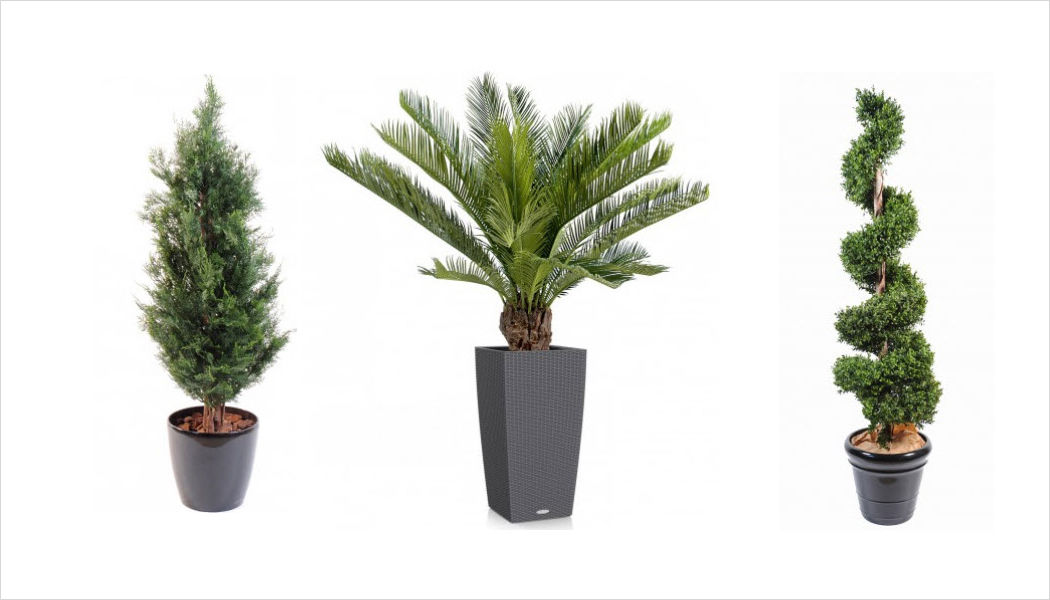 FLORE EVENTS Kunstpflanze Bäume und Pflanzen Blumen & Düfte  |