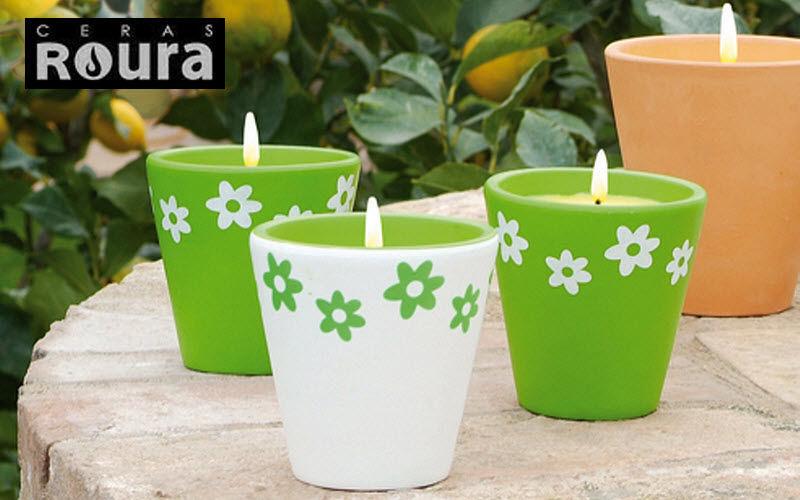 Ceras Roura Kerze Kerzen und Kerzenständer Dekorative Gegenstände  |