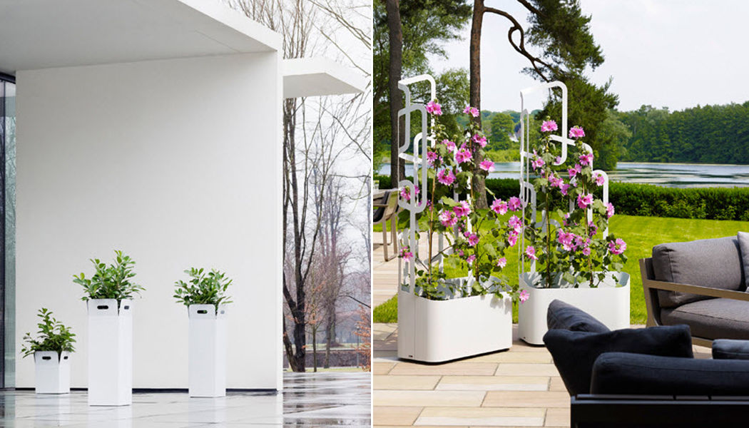 Flora Blumenkübel Kübel  Blumenkasten & Töpfe Garten-Pool | Design Modern