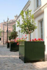 L'atelier Soleil Ferronneries Orangerie-Pflanzkübel