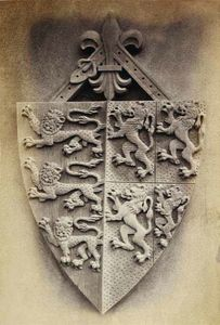 LINEATURE - third shield - 1871 - Fotografie