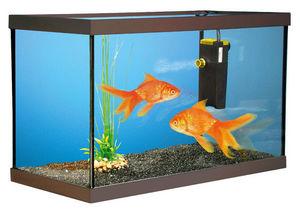 ZOLUX - aquarium kit poissons rouges 40x20x15cm - Aquarium