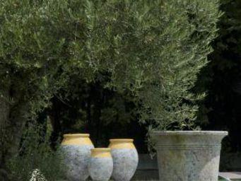 TERRES D'ALBINE - jarres olive patine classique - Gartenamphore