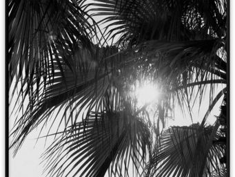 PAPER COLLECTIVE - palm trees - Plakate Und Poster